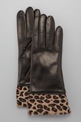Portolano Leopardcuff Leather Gloves - Lyst
