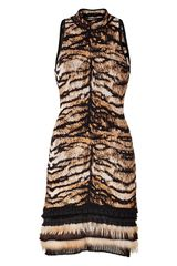 Roberto Cavalli Bronze black Intarsia Knit Dress with Fur Trim - Lyst