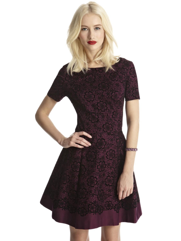 Oasis Lace Skater Dress in Purple | Lyst
