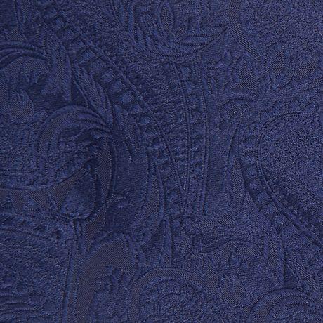 Paisley Tie in Blue
