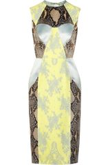 Erdem Brynn Python print Satin and Lace Dress - Lyst