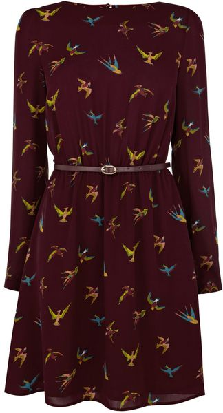Oasis Tropical Bird Dress - Lyst