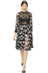 Dolce & Gabbana Lace and Polka Dots Silk Chiffon Dress - Lyst