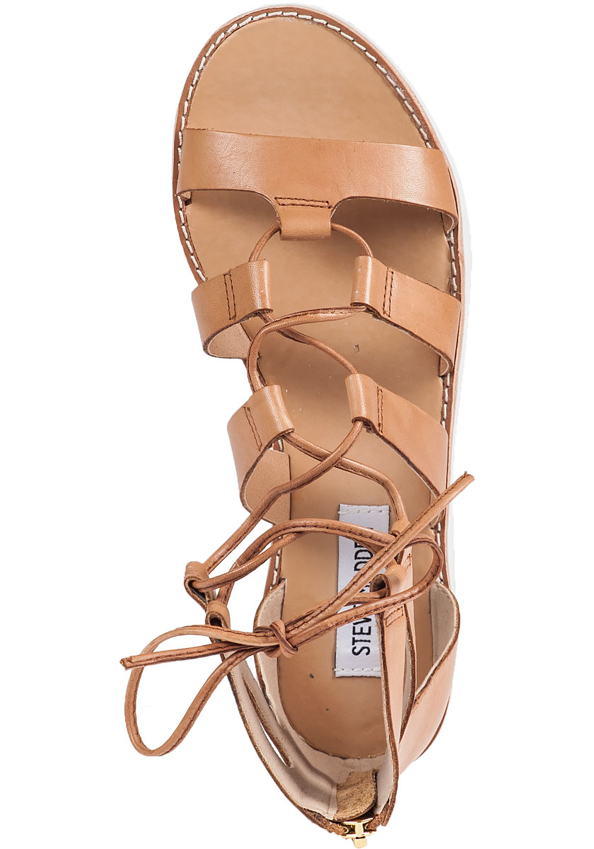 Lyst Steve Madden Marvell Gladiator Sandals In Brown