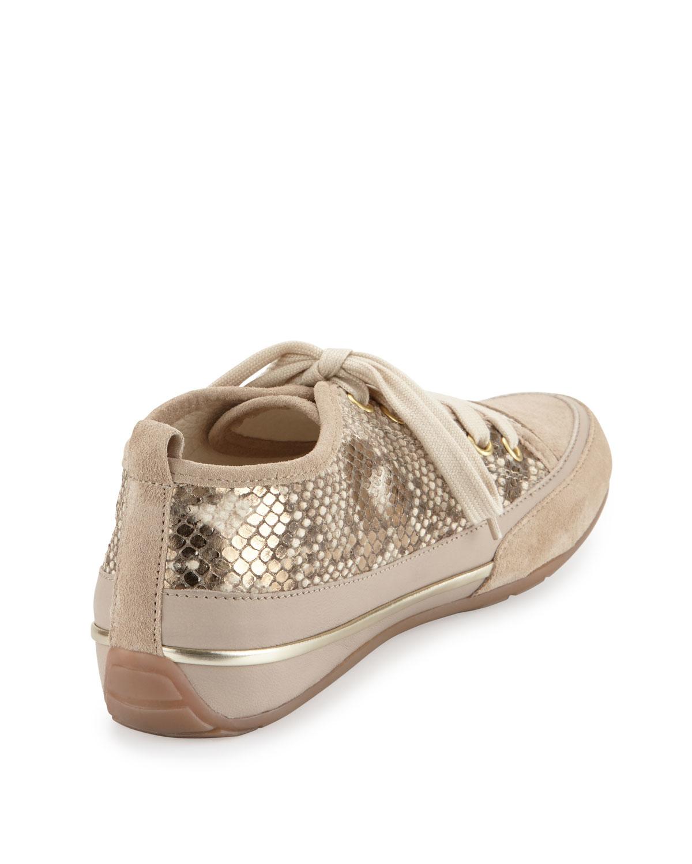 Shoes Lace Up Women B Live