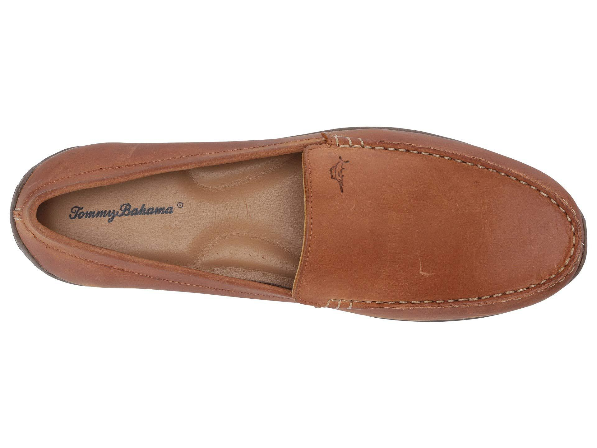 76e75cfc6bf Tommy Bahama - Brown Acanto for Men - Lyst. View fullscreen
