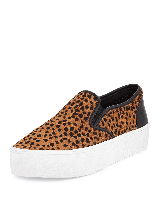 Stretch Vans Shoes