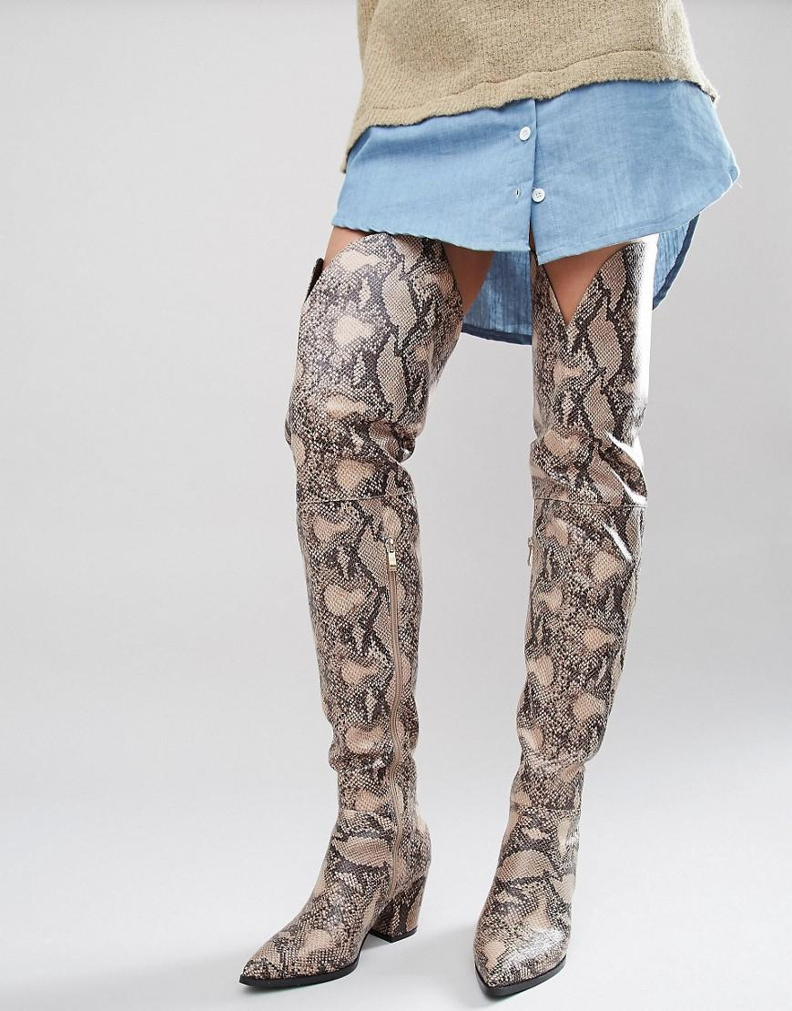 snake print heeled the knee boots lyst