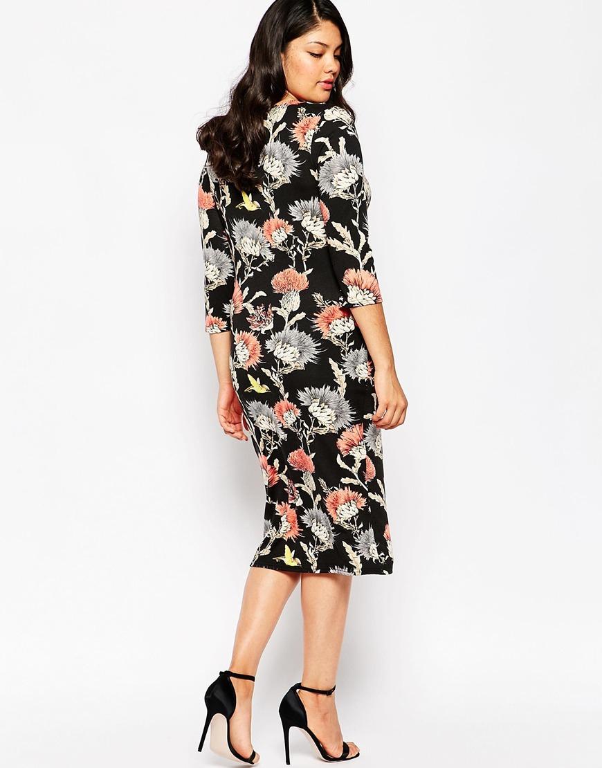 Club l Plus Size Midi Dress In Floral Bird Print in Black ...