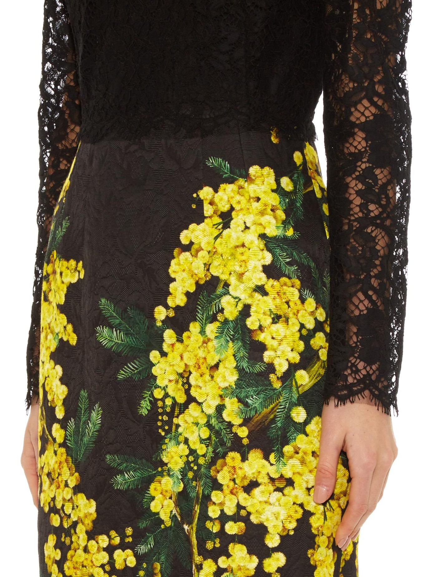 Lyst Dolce Amp Gabbana Mimosa Print Brocade And Lace Dress
