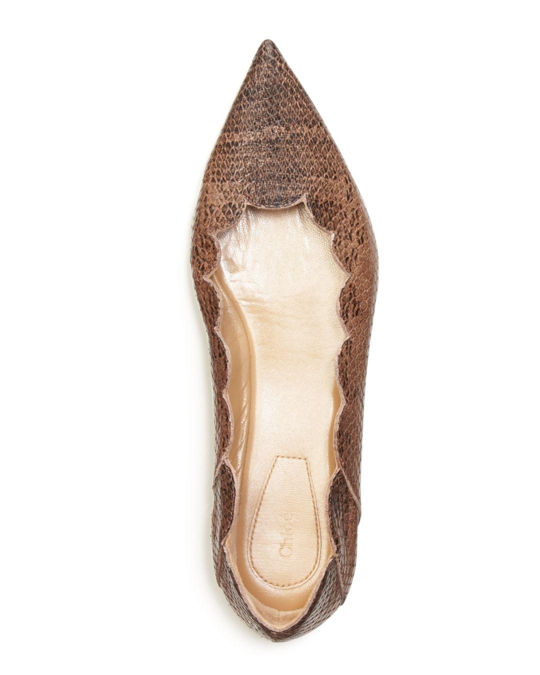 850cbbfc03f Chloé Women's Lauren Pointed Toe Ballerina Flats in Brown - Lyst