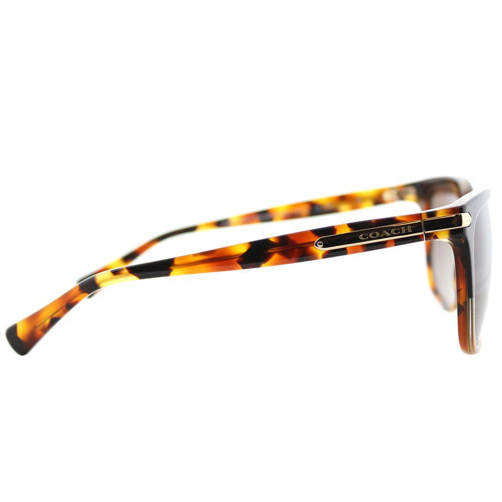 c02e0547e0f COACH - Multicolor Hc 8132 5438t5 Black Tortoise   Tortoise Cat-eye  Sunglasses - Lyst. View fullscreen