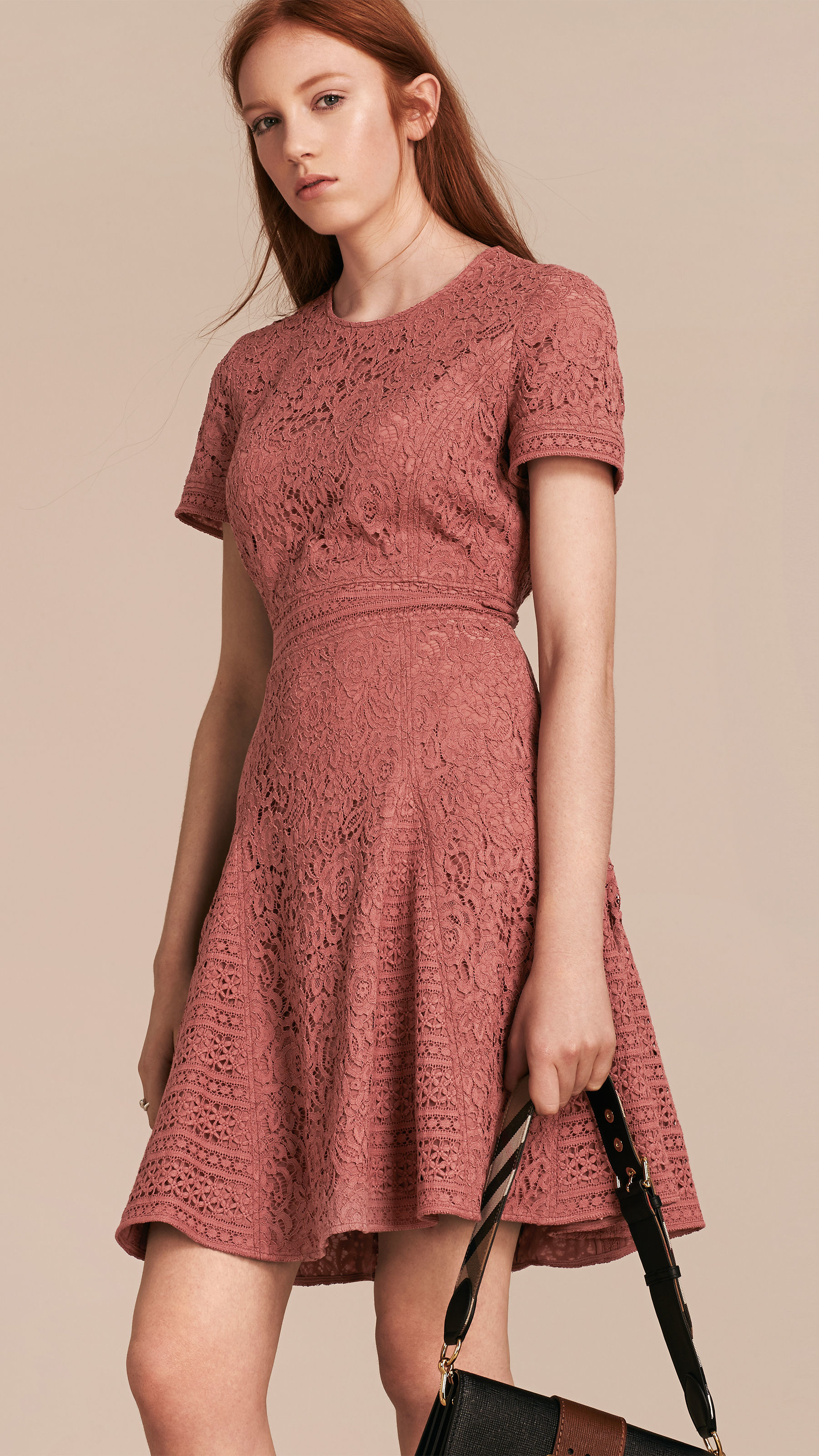 Lyst burberry italian lace a line dress in pink gallery ombrellifo Image collections