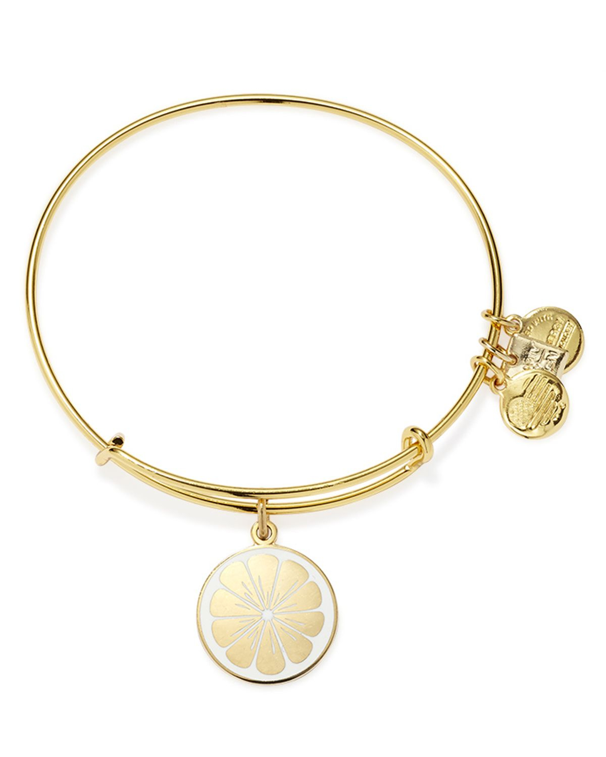 Alex And Ani Charm Bracelets: Alex And Ani Zest For Life Expandable Wire Bracelet In