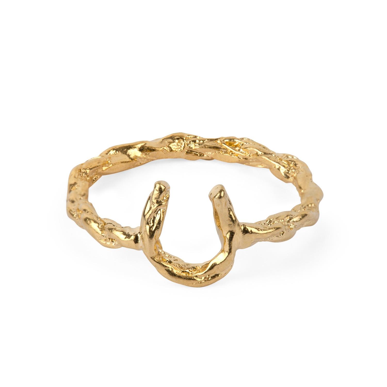 Lyst - Chupi Make Me Feel Lucky Horseshoe Ring Gold in ...