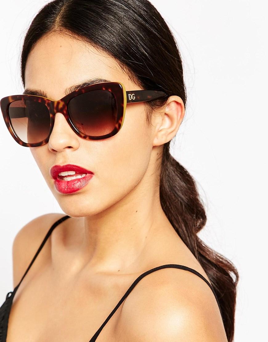 Lyst Dolce Amp Gabbana Oversized Cat Eye Sunglasses In Brown