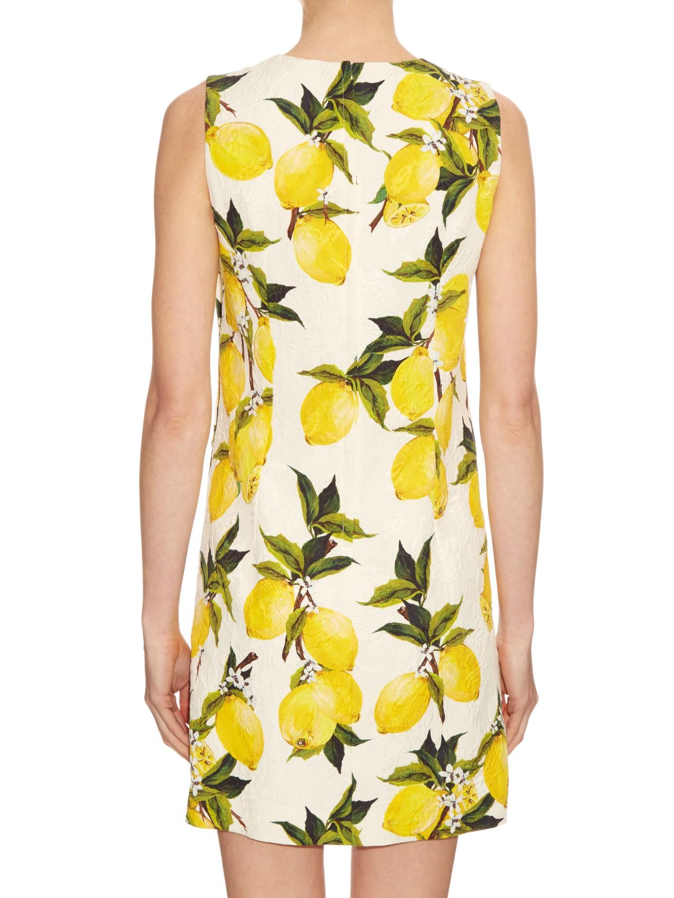 26dc13956a9 Dolce And Gabbana Lemon Dress Price
