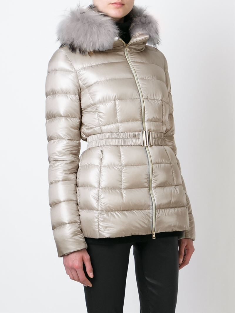 Herno Raccoon Fur Collar Padded Jacket In Gray Lyst