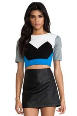 Mason by Michelle Mason Crop Top