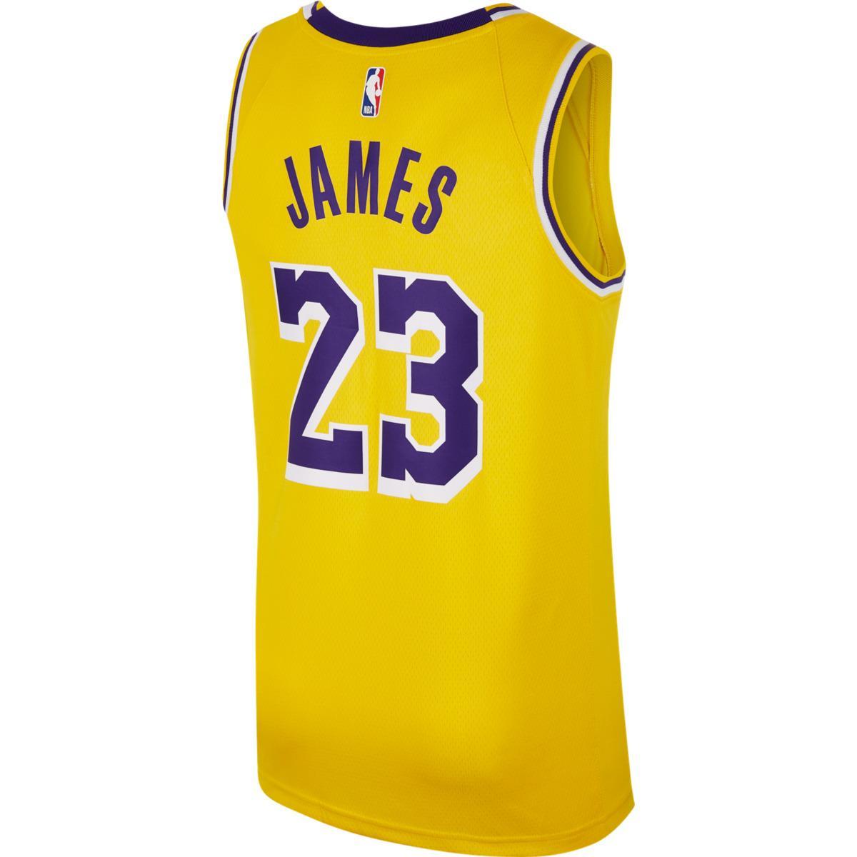 66e2c9ec6dd Nike Los Angeles Lakers 2018-2019 Lebron James Icon Edition Nba ...