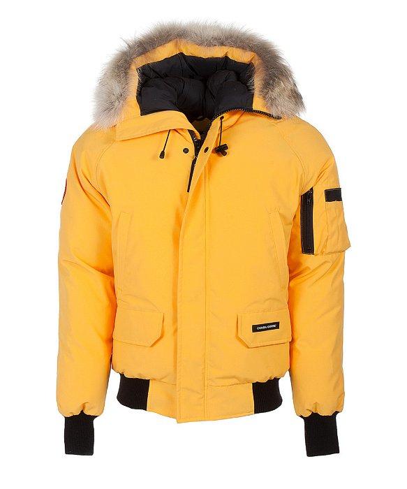 Yellow Canada Goose