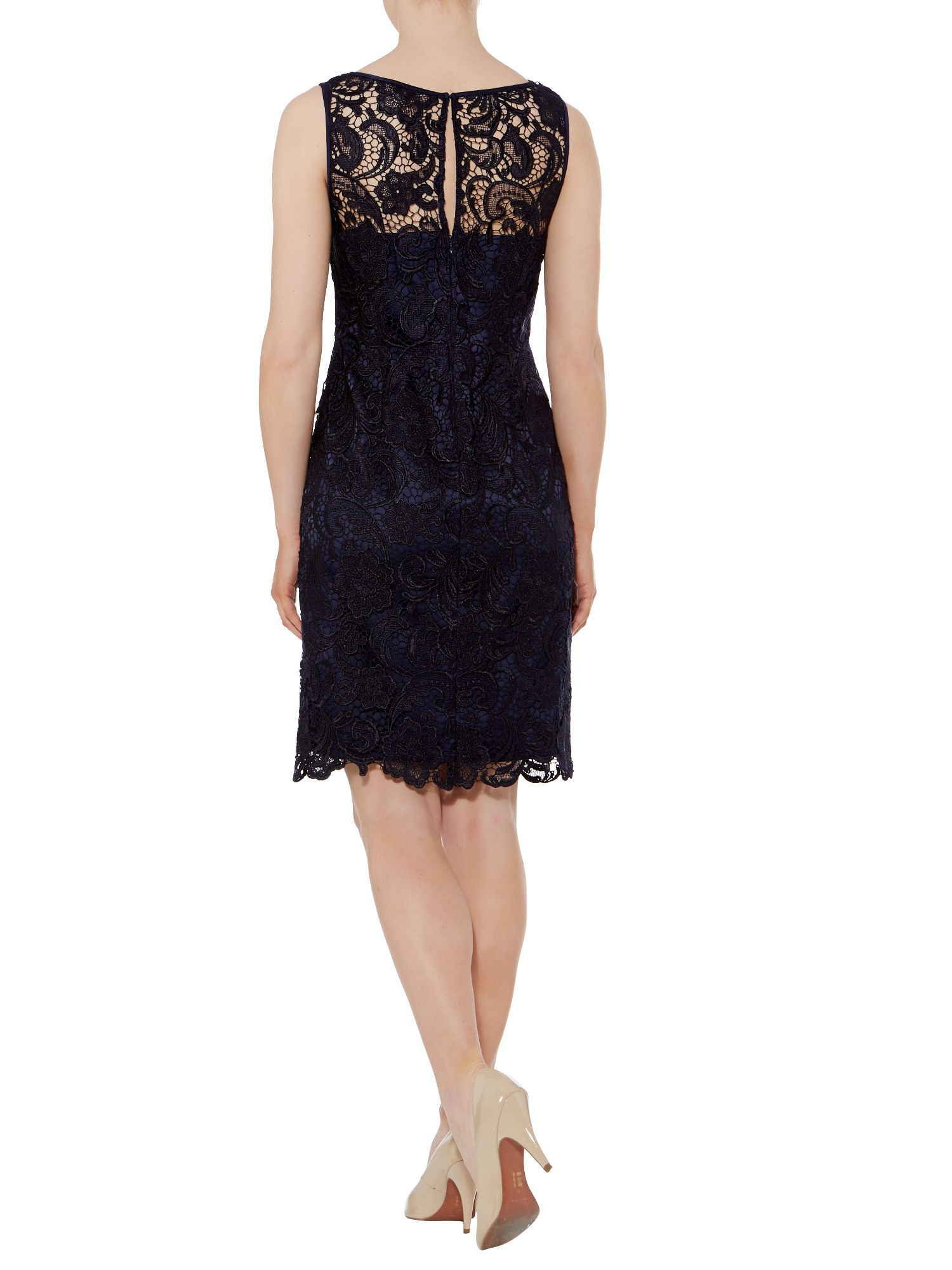 adrianna papell lace knee length cap sleeve shift dress in