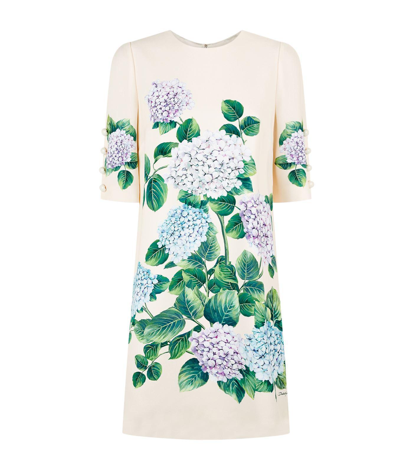 394d160e700a77 Lyst - Dolce   Gabbana Hydrangea Shift Dress