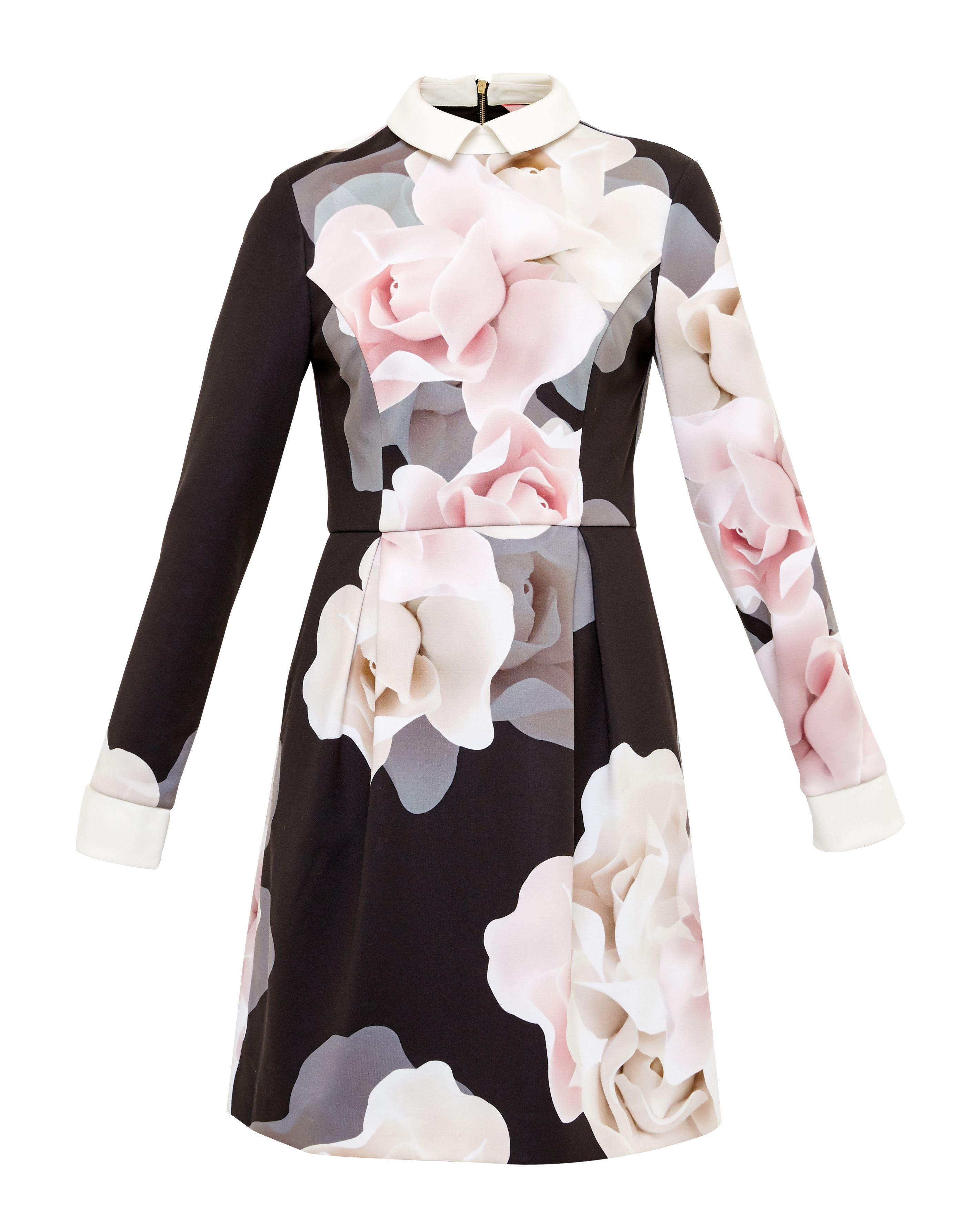 Ted Baker Lascii Porcelain Rose Collar Dress Black In