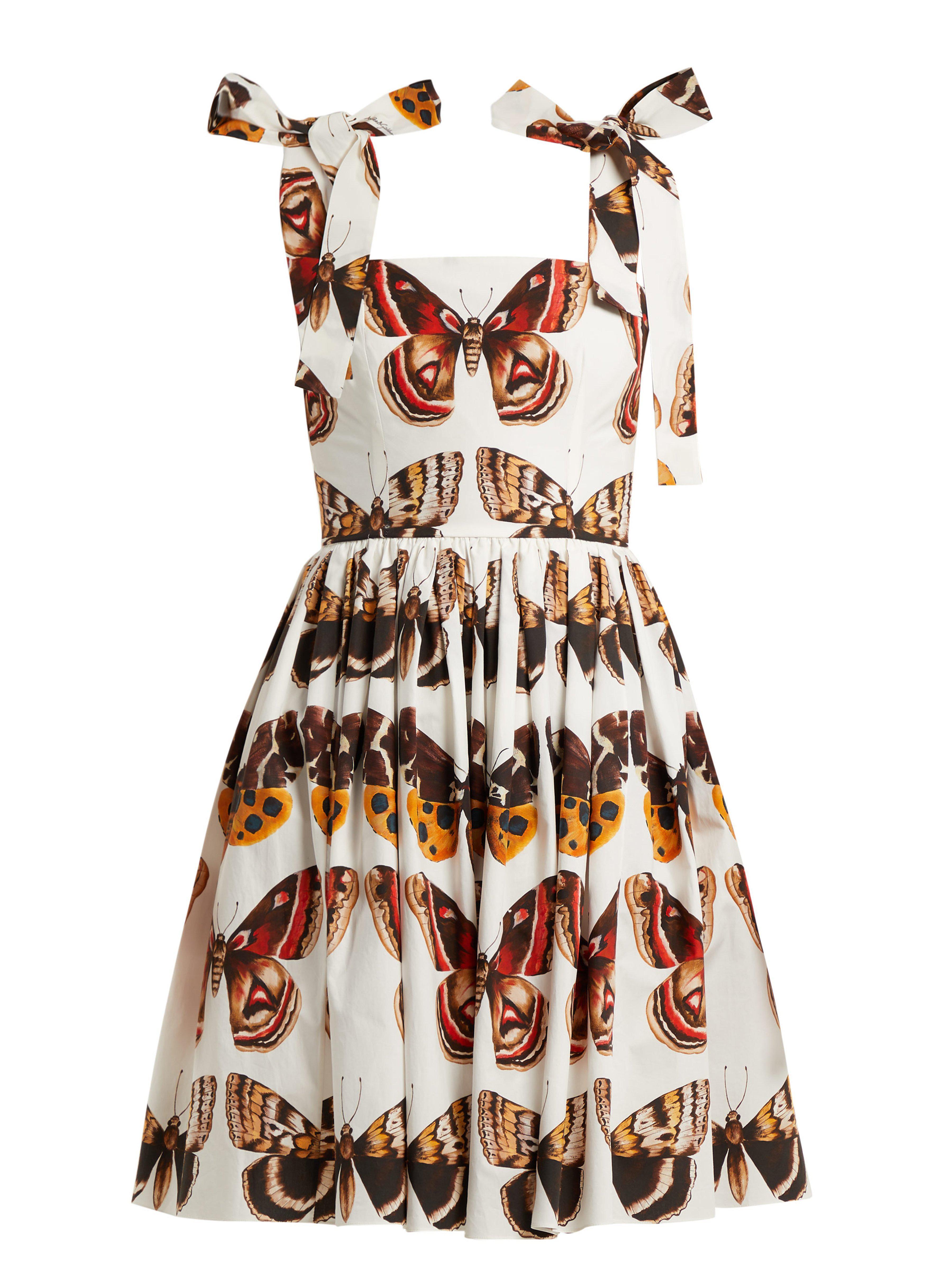 b2bda2ed2068 Lyst Print Mini Poplin amp  Brown Gabbana Butterfly Cotton Dress Dolce In  qwZv7PnStS