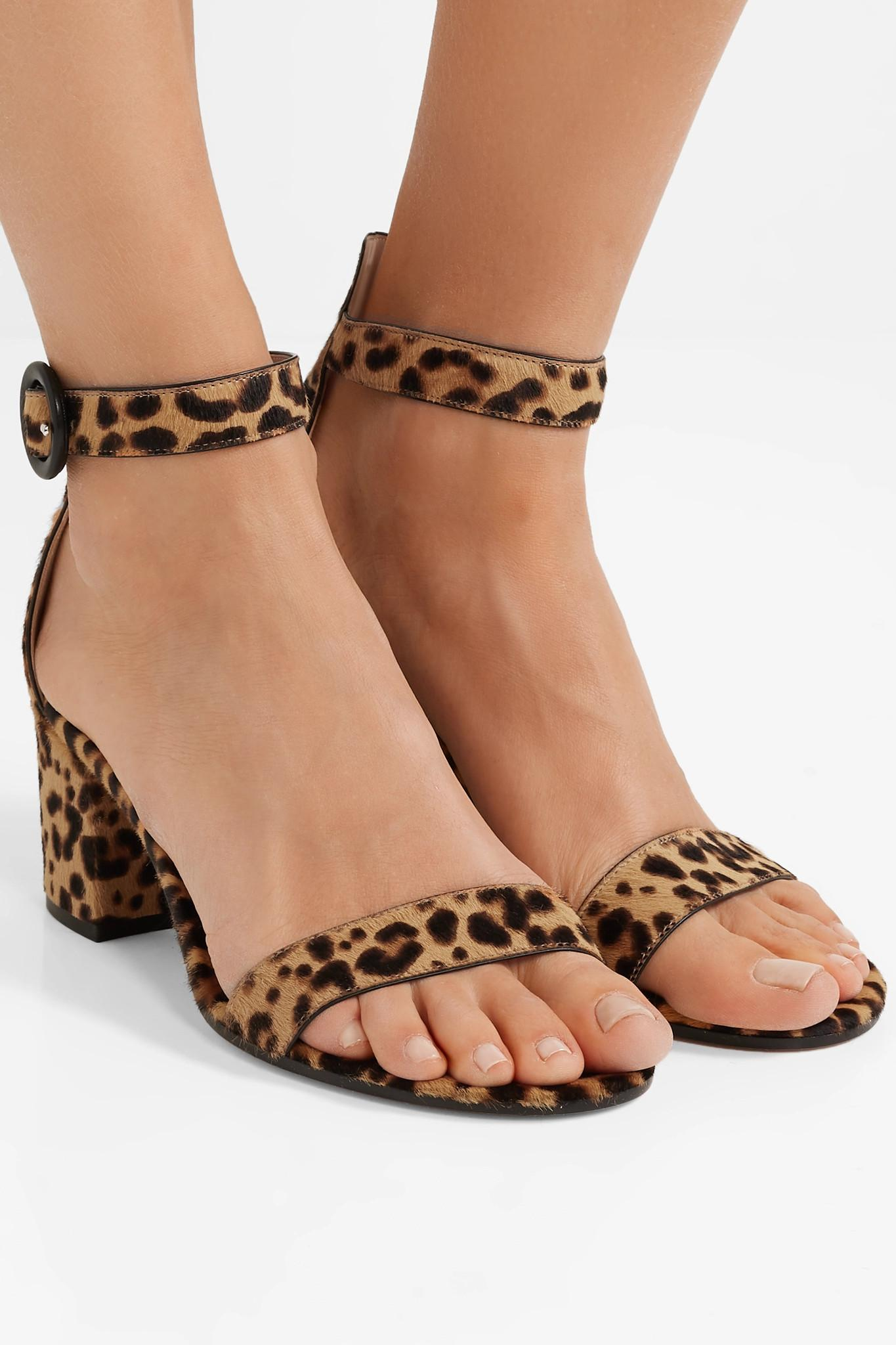 091ab240c97d Gianvito Rossi - Brown Versilia 60 Leopard-print Calf Hair Sandals - Lyst.  View fullscreen
