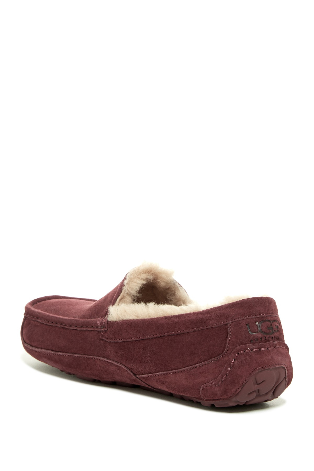 nordstrom ugg ascot leather