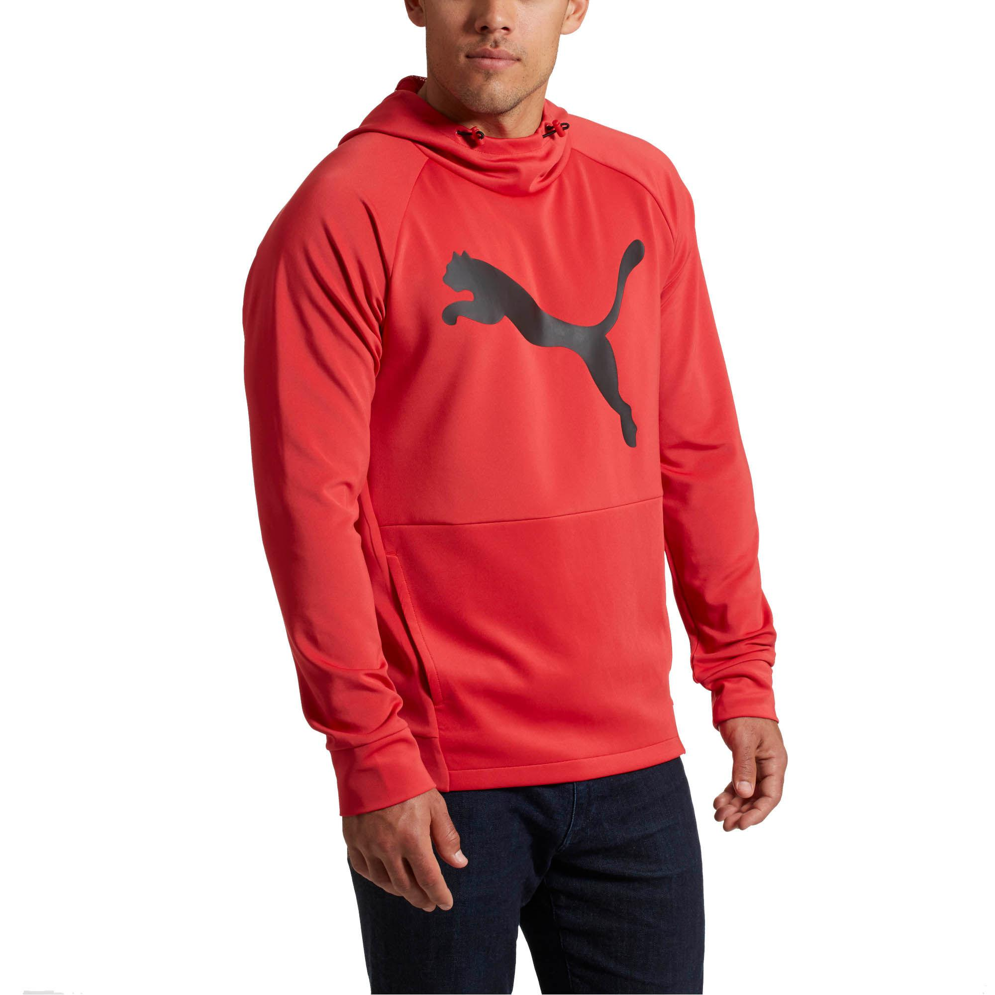 ba1a5d675e Lyst - PUMA Tec Sports Cat Hoodie in Red for Men