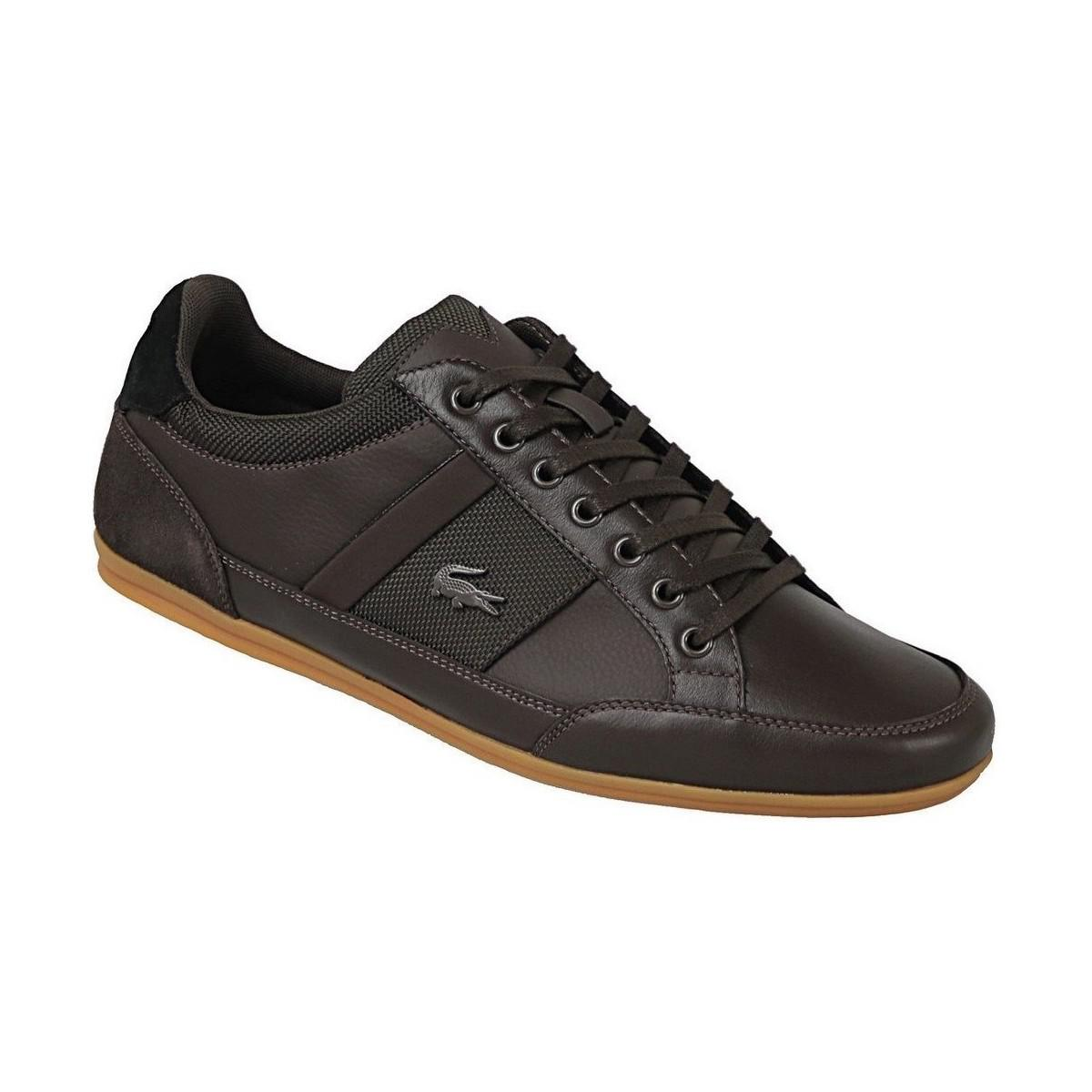 7d52f24c3 Lacoste Chaymon 116 Men s Shoes (trainers) In Brown in Brown for Men ...