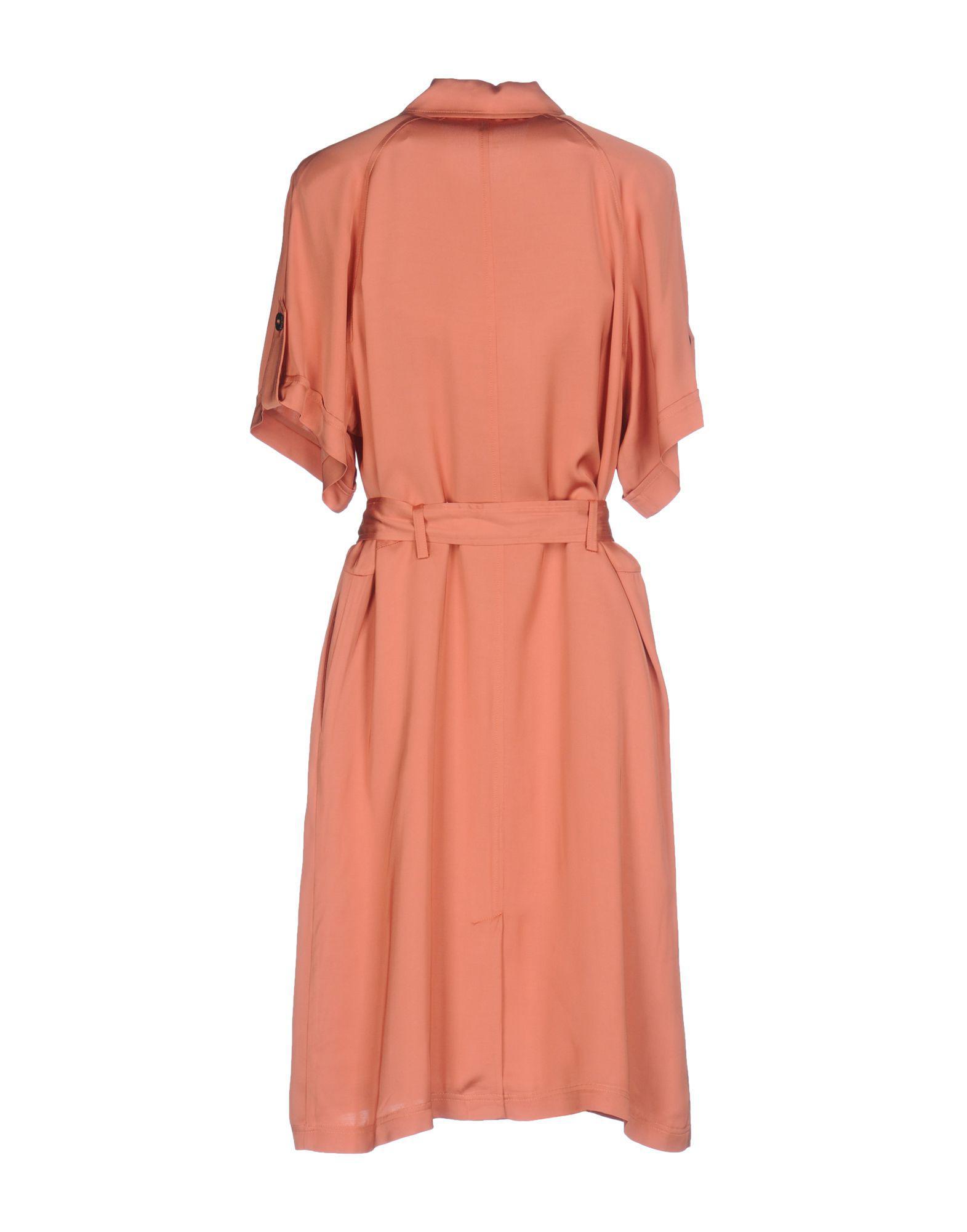 Exclusive Cheap Online Discount Excellent DRESSES - Knee-length dresses Paul & Joe Enjoy For Sale Cheap Price Fake Sale Shopping Online x4kVTPBY